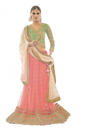 Distinguishable Baby Pink Net Lehenga Choli