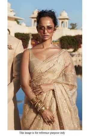 Bollywood Sabyasachi Inspired Chikoo net saree