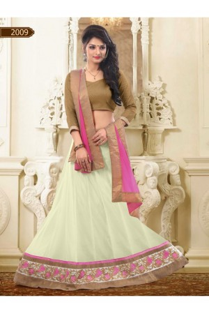 Off White Colored Border Worked Net Lehenga Choli 2009