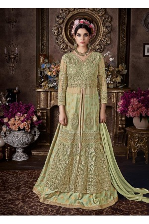 Pista green net wedding anarkali 104