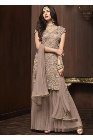 Sonal Chauhan Grey net wedding Palazzo kameez