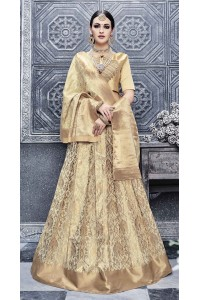 Party Wear Pure banarsi silk Beige Lehenga 25005