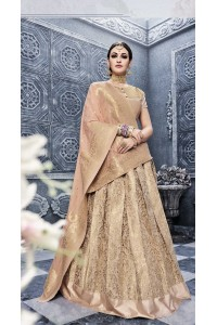 Party Wear Pure banarsi silk Biege Lehenga 25002