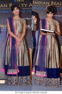 Chitrangada singh grey Bollywood Anarakali