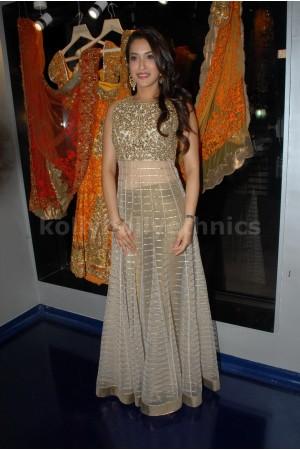 Rashmi nigam golden Bollywood Anarakali