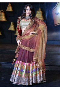 Malaika arora khan Maroon bridal lehenga
