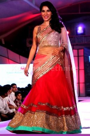 Sophia chaudary pink designer lehenga choli