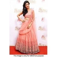 Shruti Hassan net and raw silk lehenga choli