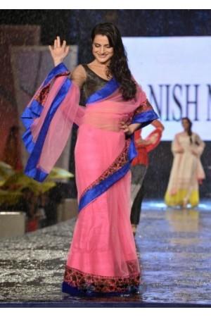 Amisha Patel saree