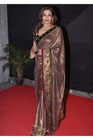 Raveena tandon in mettalic bronze saree