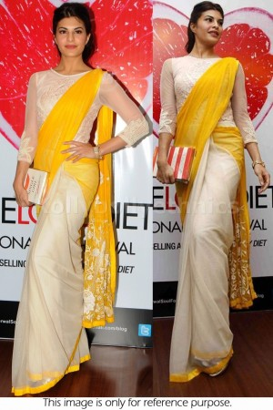 Jacqueline fernandez half and half bollywood saree