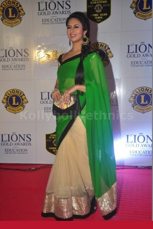Divyanka Tripathi Half and half saree