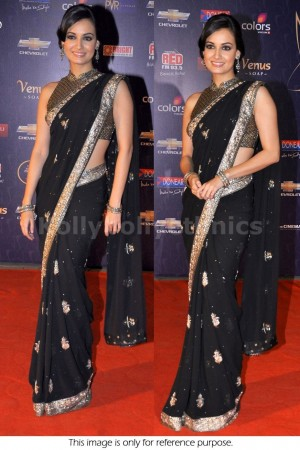 Dia mirza Black Saree