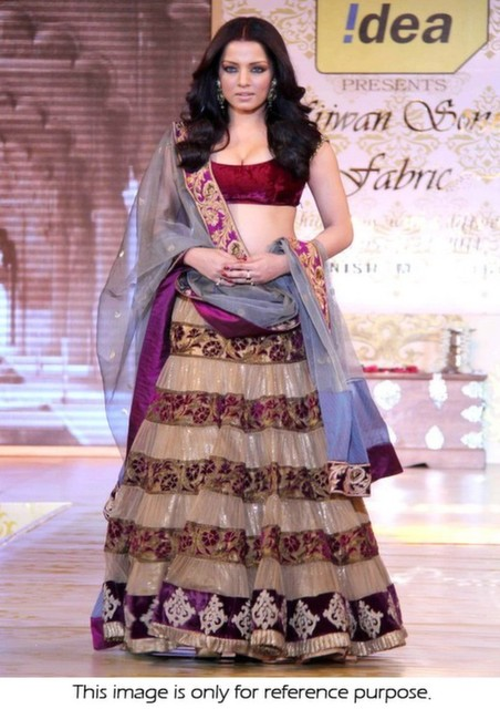 Bollywood Style Celina Jaitley net and velvet mijwan lehenga in biege and purple color