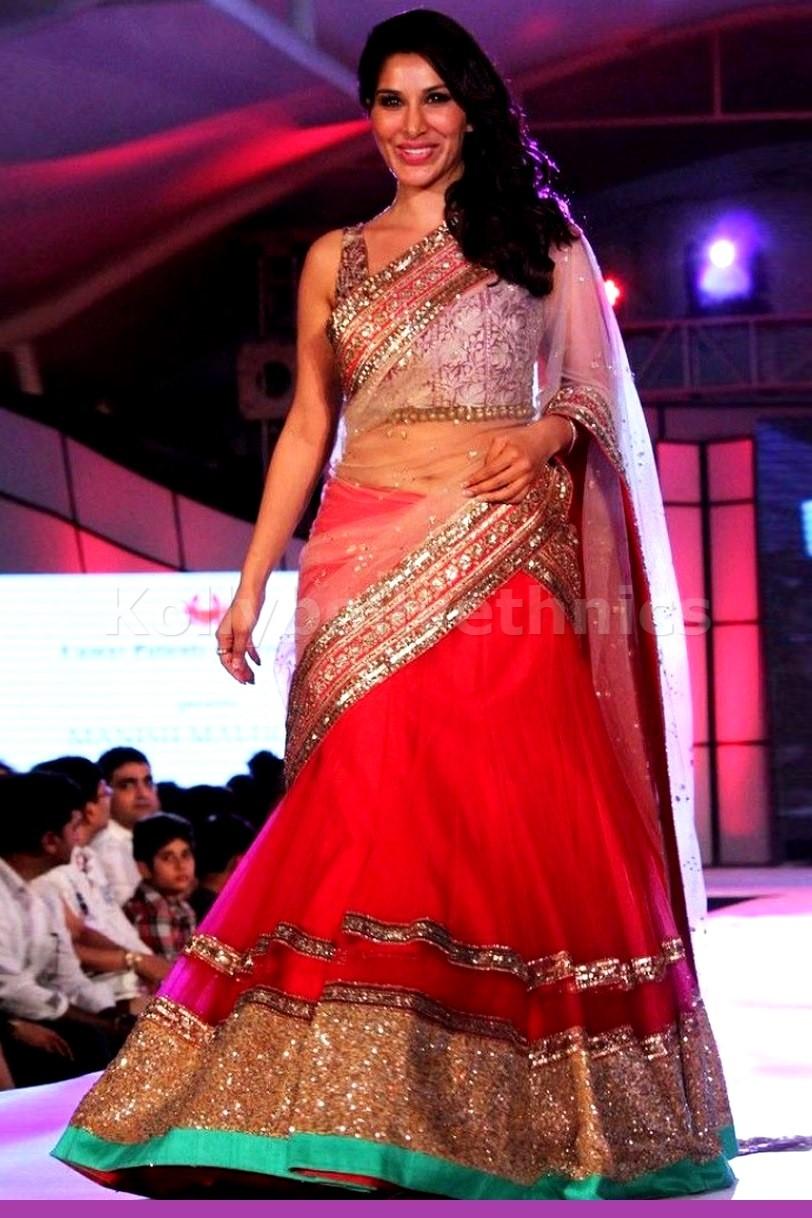 Bollywood Style Sophie Choudry net designer lehenga choli in pink color