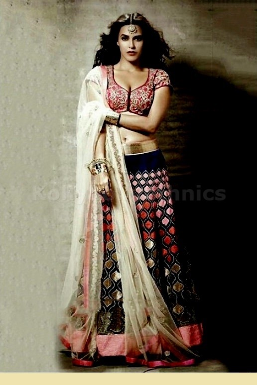 Bollywood Style Neha Dhupia net and velvet lehenga in blue and pink color