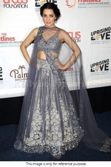 Bollywood Style Celina Jaitley net lehenga in grey color