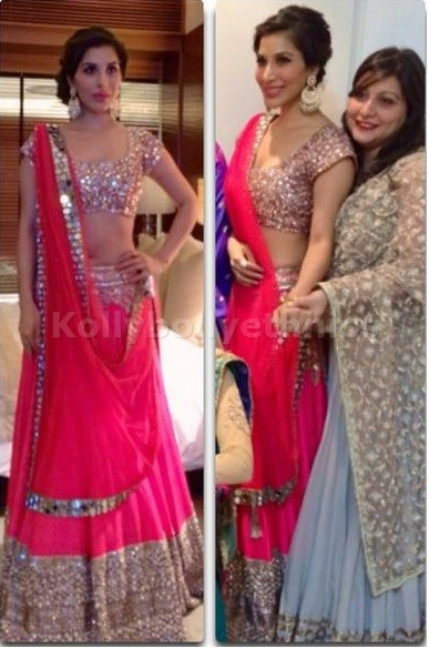 Bollywood Style Sophie choudry net lehenga in Pink color