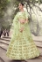 Light green net sequins work lehenga choli 5909