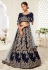 Navy blue embroidered velvet lehenga choli 16044