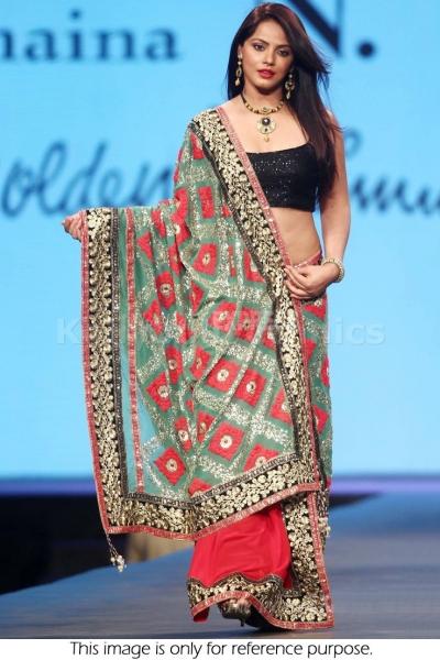 Neetu Chandra half and half bollywood saree