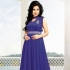 Navy Blue Georgette / Velvet Gown