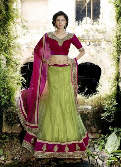 Renowned Net Patch Border Work A Line Lehenga Choli