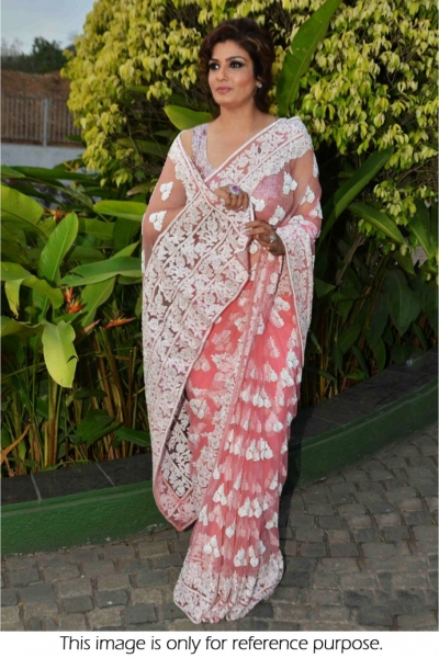 Raveena Tandon net saree in peach colour