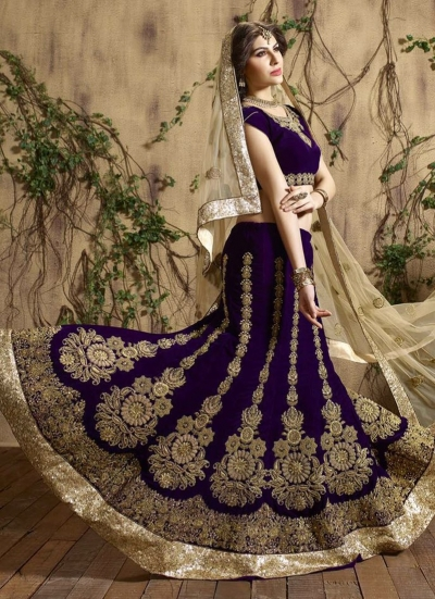 Blissful Embroidered Work Velvet A Line Lehenga Choli