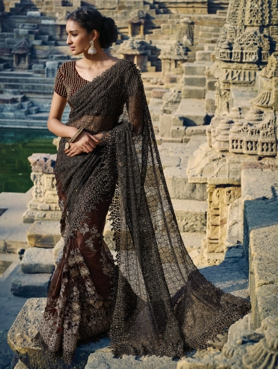Brown color Netted moti work Wedding saree