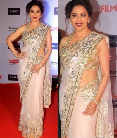 Madhuri dixit white color net bollywood saree
