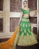 Peppy Green Net A Line Lehenga Choli