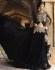 Black color georgette pant style wedding wear anarkali suit