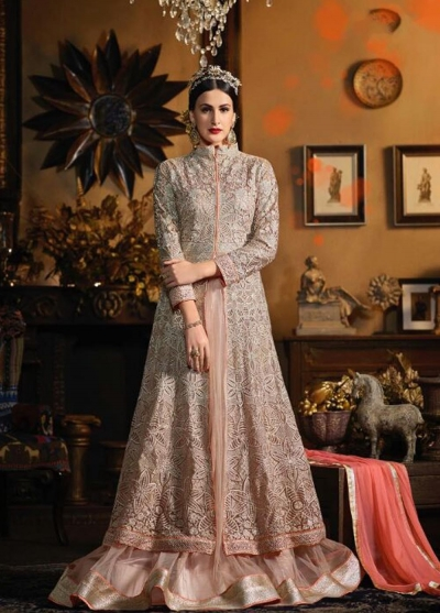 Beige color netted wedding wear anarkali