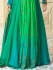 Kareena Kapoor green georgette anarkali