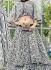 Party wear grey net a line lehenga 205