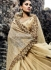 Gold color imported fabric and net wedding wear saree