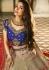 Malaika arora khan Grey blue silk Indian wedding Lehenga choli 13198
