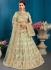 Pista satin silk Indian Wedding Lehenga choli 1701