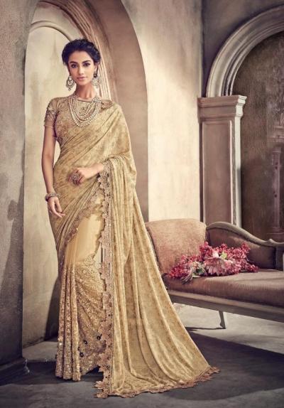 Chiku color net and lycra designer party wear saree