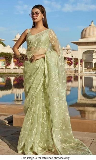 Bollywood Sabyasachi Inspired pista green net saree